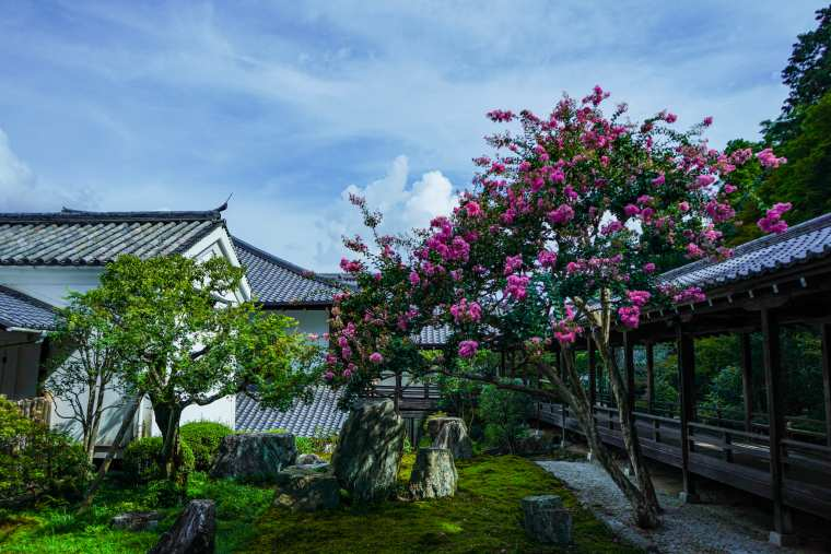 京都 南禅寺 方丈 六道庭