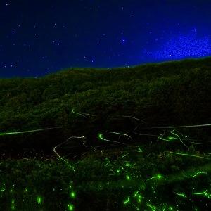 兵庫・家島を巡る星空ツアー