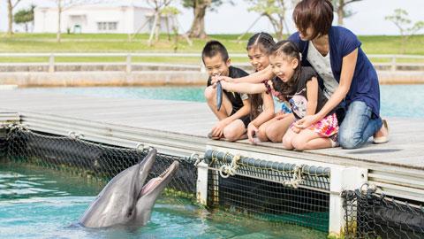 幼児もOK!子どもが成長する!沖縄の自然感動体験6選