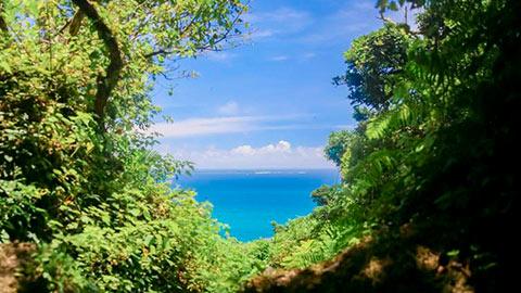 回り方はこれで完璧!沖縄南部・三大パワースポットめぐり