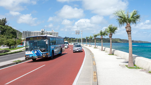 ゆるっと沖縄路線バス旅モデルコース!人気観光地を周遊