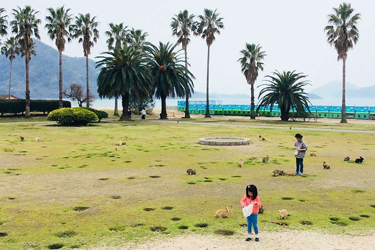 休暇村大久野島の広場