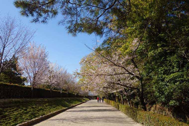 栗林公園の北庭