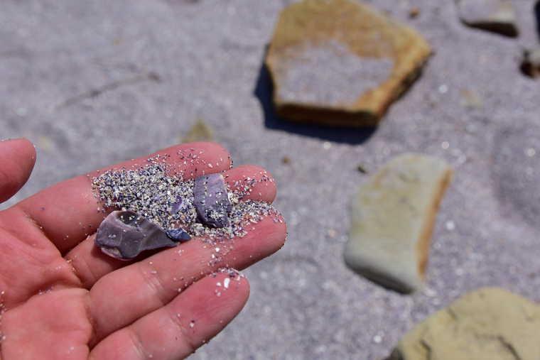 佐久島「紫の砂浜」