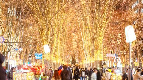 心温まる希望の光!宮城県「SENDAI光のページェント」の魅力と楽しみ方
