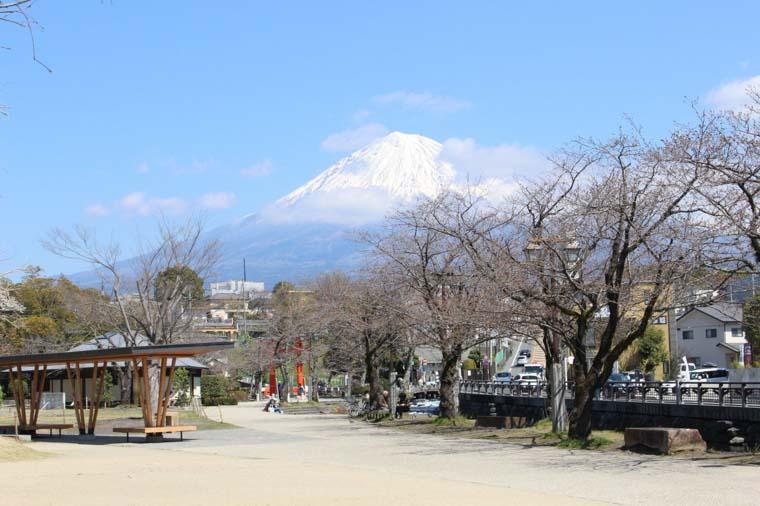 富士山本宮浅間大社から見える富士山