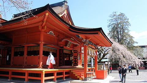 美の女神が宿る。富士山本宮浅間大社で恋愛・子宝のご利益を授かろう