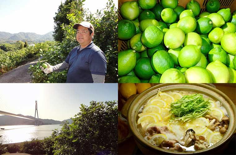 四季折々にレモンの魅力が異なるレモンの島・瀬戸田