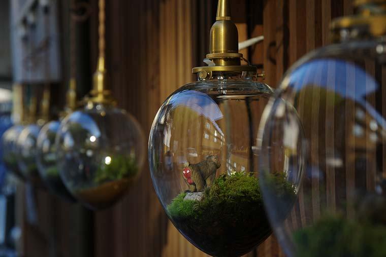 苔ランプのライトアップ