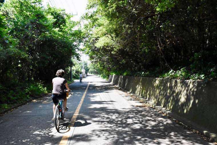 式根島 サイクリング