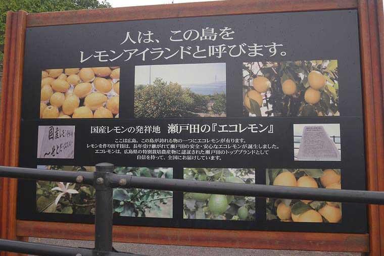 レモンに関連した記念碑や看板