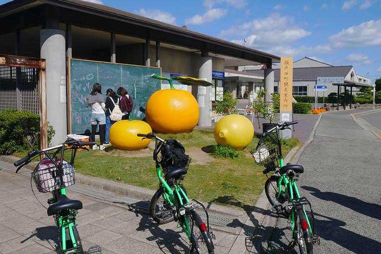 オブジェ柑橘