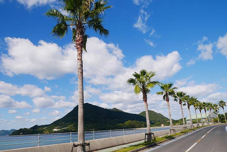 生口島のサイクリングロード