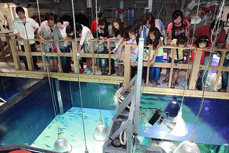サンシャイン水族館 イベント「探検ガイドツアー」「エサやり体験」