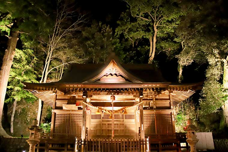 日枝神社 ライトアップ