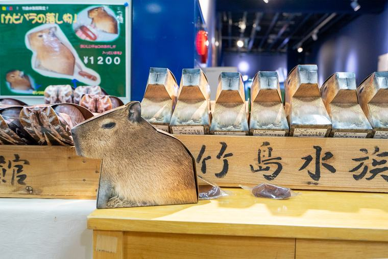 竹島水族館 お土産「カピバラの落とし物」