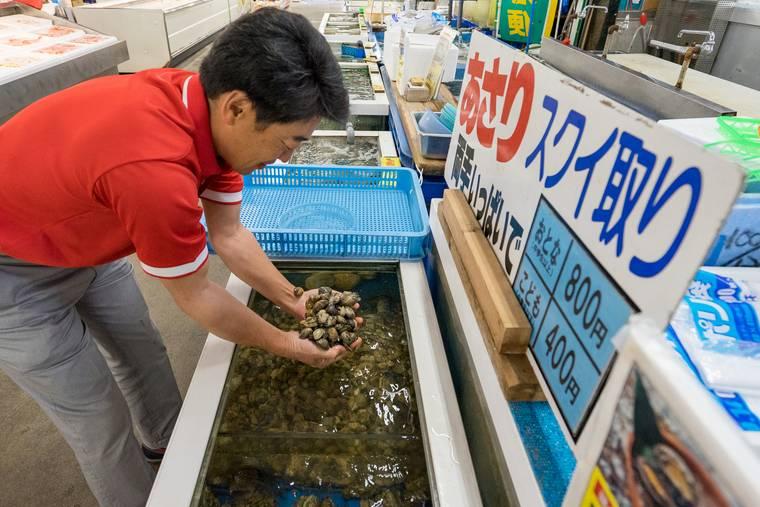蒲郡海鮮市場 あさりのスクイ取り