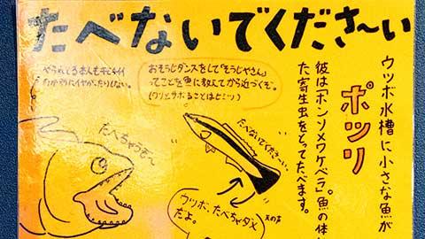 ゆるい解説で人気の竹島水族館へ!家族で行く蒲郡モデルコース