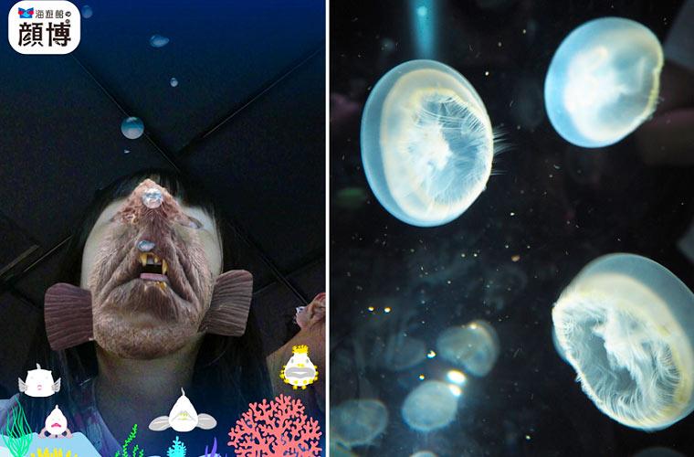 「顔カメラ」で人面魚になって写真が撮れる