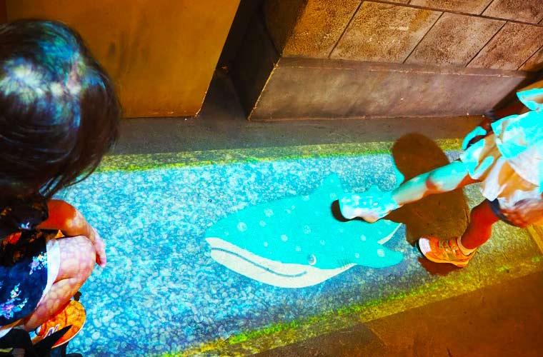 なにわ食いしんぼ横丁内の光で映し出された水路には海遊館のジンベエザメが泳いでいた