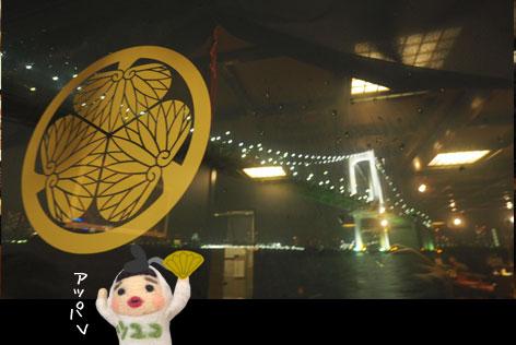 徳川紋章と夜景