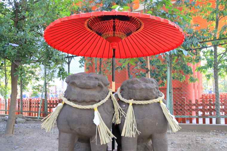 浅草神社 夫婦狛犬