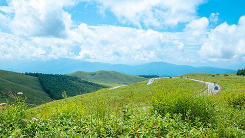 夏の高原を走る!ビーナスラインの絶景ドライブルート