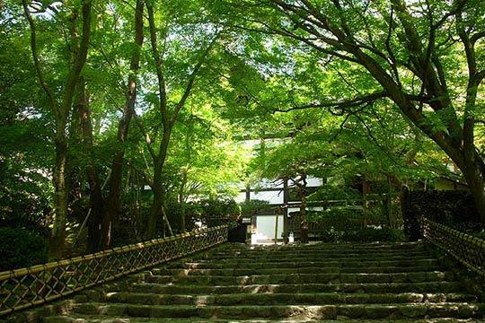 古都京都の文化財のひとつに登録されている