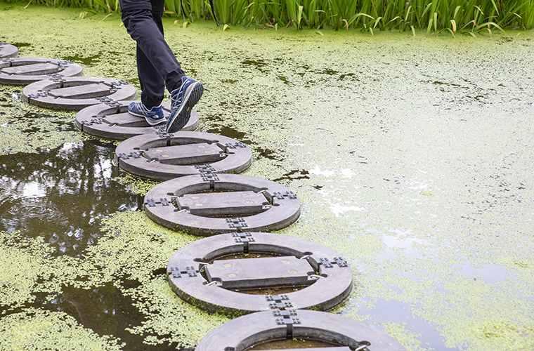 忍野しのびの里 池の道