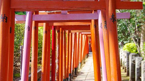 東京下町「谷根千」散歩コース。根津神社・カフェ・雑貨屋をのんびり巡ろう