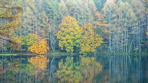 長野・蓼科高原「横谷渓谷」へ、絶景と名画の風景を求めて