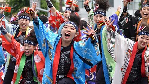 初心者でも満喫!札幌YOSAKOIソーラン祭りの歩き方