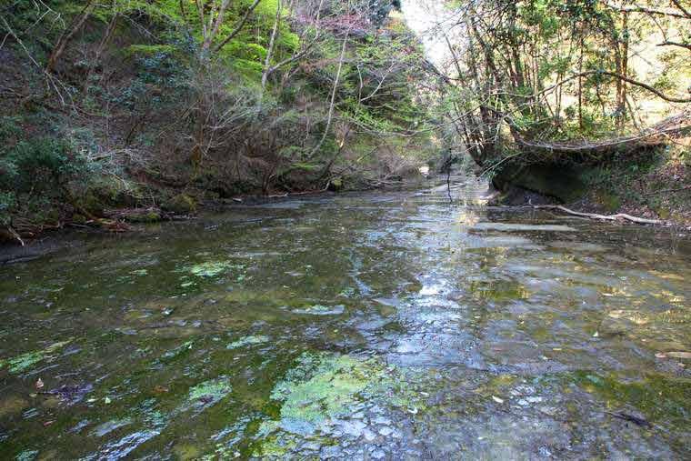 千葉 岩畳の上を浅く水が流れる清流