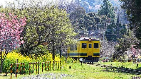 養老渓谷の絶景を巡る1泊2日鉄道旅【後半:いすみ鉄道と大多喜編】