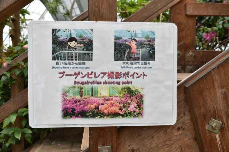 湯の川温泉 函館市熱帯植物園