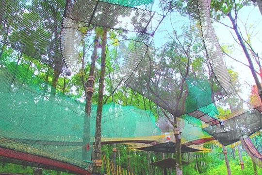 森の空中あそび parcabout(パカブ)