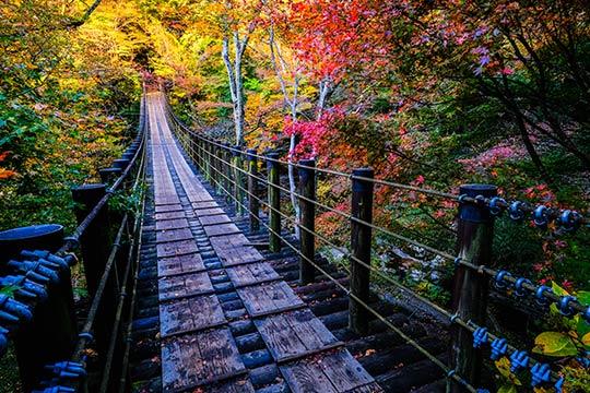 茨城県 花貫渓谷 汐見滝吊橋