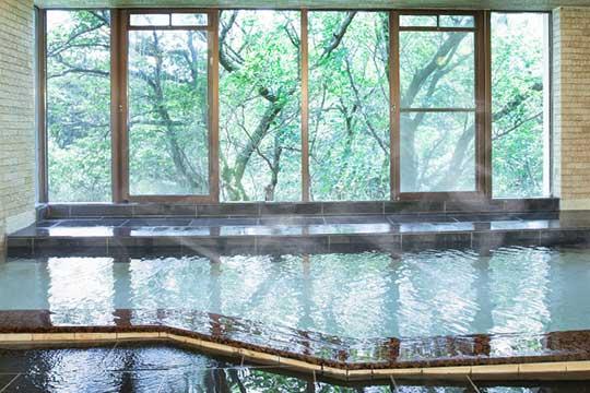 伊豆一碧湖レイクサイドテラス(旧:紀州鉄道 伊豆一碧湖ホテル)