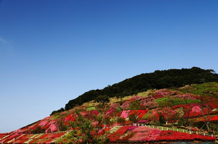 長崎県 不老山