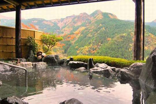 新祖谷温泉 ホテルかずら橋