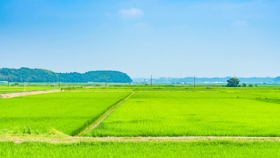 気軽に週末田舎暮らしへ!農業体験・田舎体験ができる人気の宿ランキング