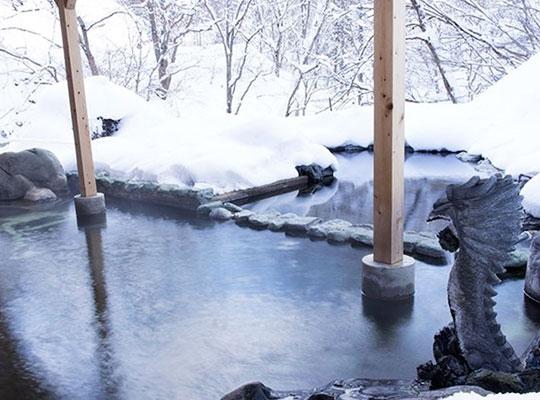 源泉掛流しの湯めぐりテーマパーク 龍洞(貸切露天風呂「大龍」)