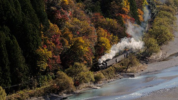 The Oigawa Railway