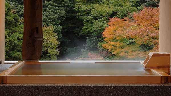 箱根湯本温泉 箱根水明荘