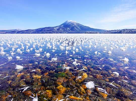 フロストフラワーの阿寒湖畔