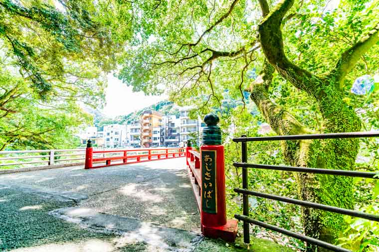 箱根湯本温泉 あじさい橋周辺