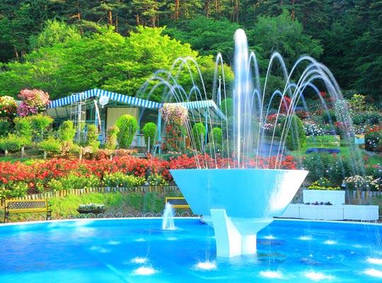 バラ園の噴水