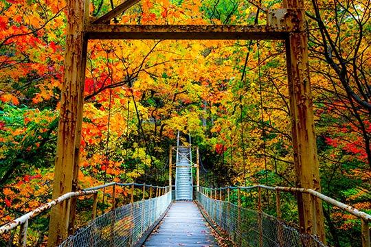 秋の花巻温泉郷