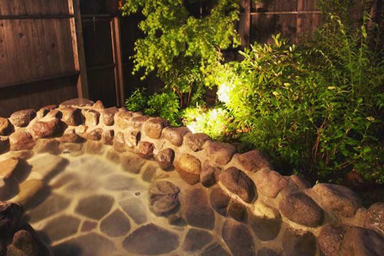 仙石原 品の木 一の湯