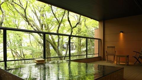 箱根の露天風呂付き客室のある人気温泉宿